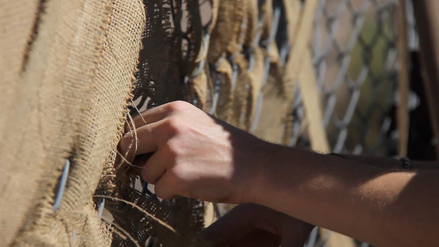 Weaving into the fence wall.